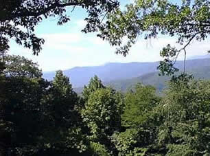 North Carolina's Blue Ridge Mountains